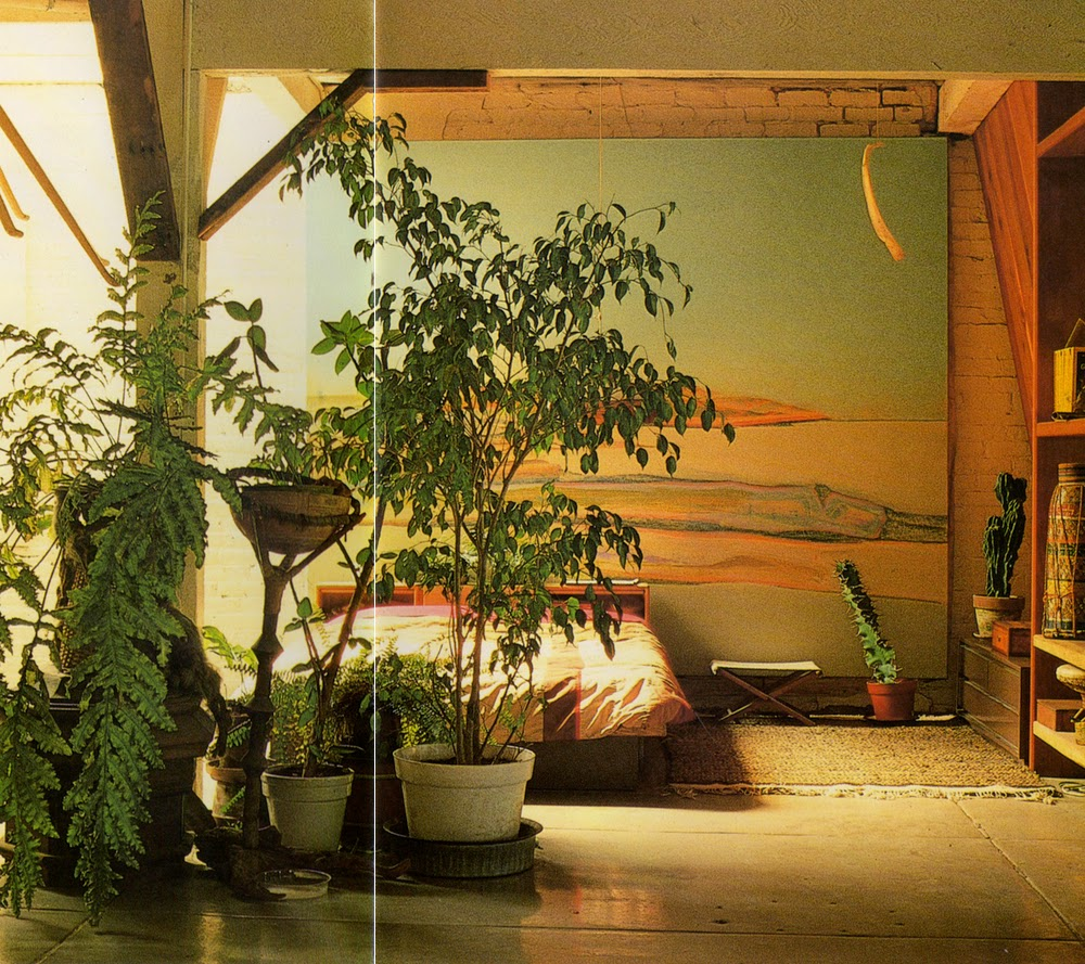 Decorating Dilemma House Plants: Moon To Moon: Book.....Terence Conran : Decorating Wth Plants