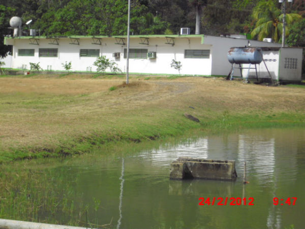 Potencialidades pisc colas municipio jos tadeo monagas Lagunas para cachamas