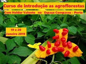 Curso de Introdução as Agroflorestas - Porto