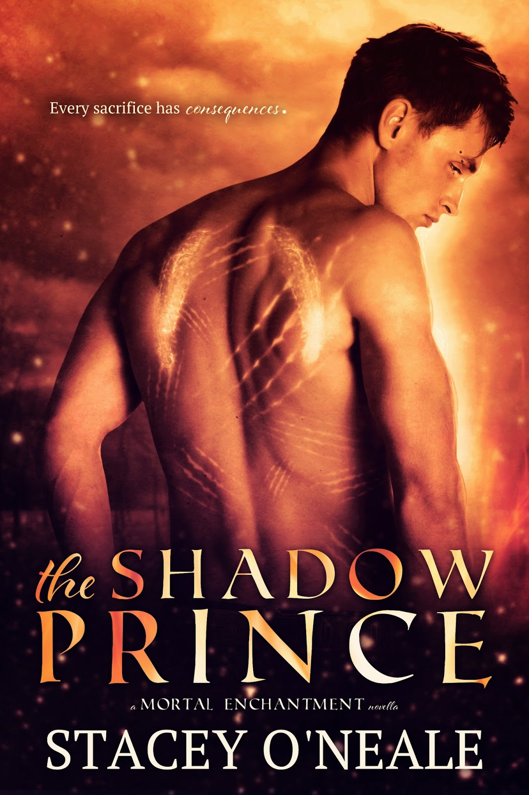 https://www.goodreads.com/book/show/20542942-the-shadow-prince