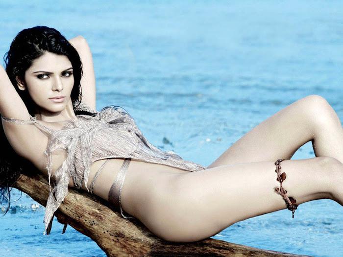 sherlyn chopra bikini hot photoshoot