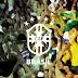 Dunga convoca a Seleção para jogos contra Colômbia e Equador