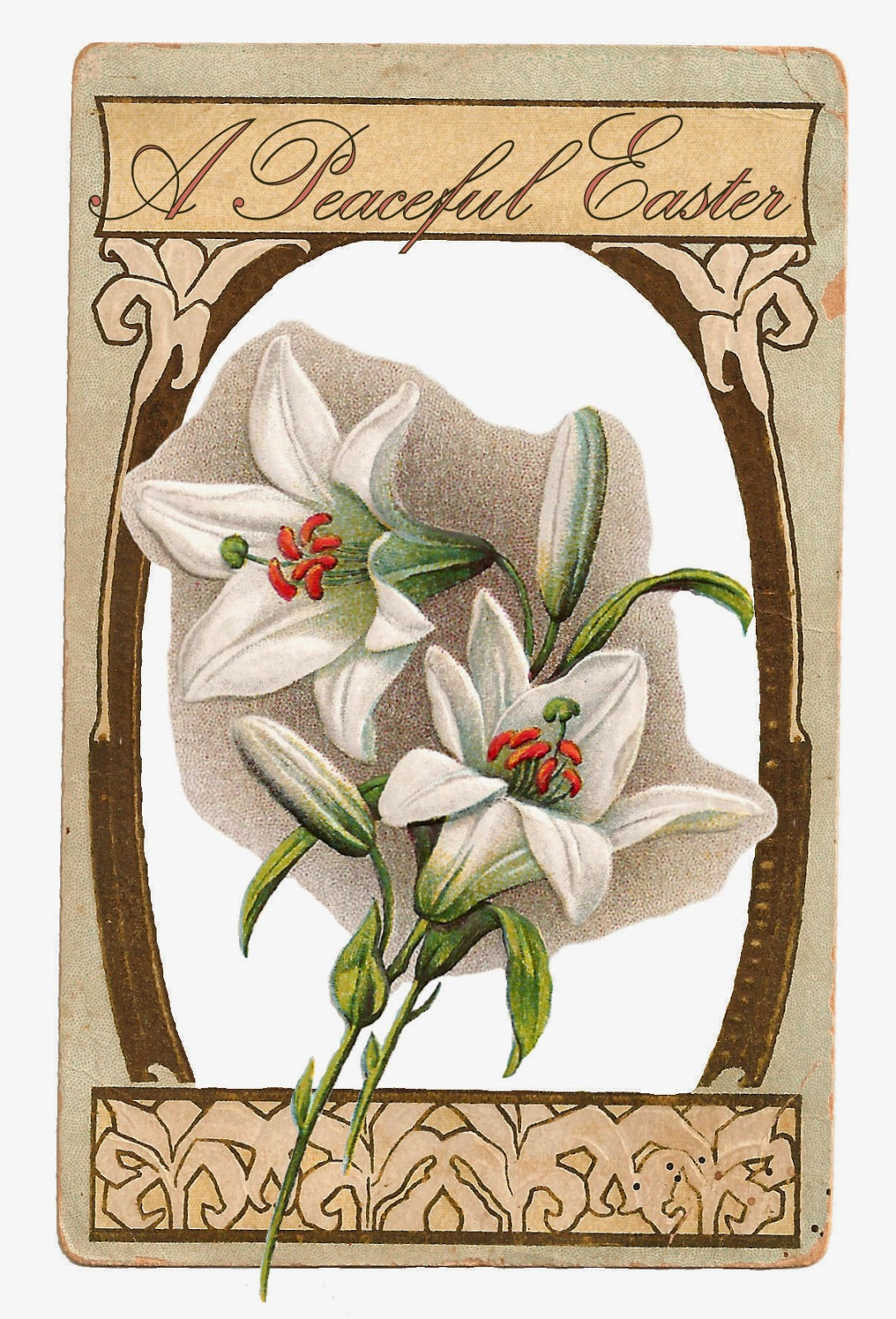 http://3.bp.blogspot.com/-gtfo-FQNbcY/VR186zhvBMI/AAAAAAAAWF4/1bNBpStYm5U/s1600/easter-card-lily-peaceful-1.jpg