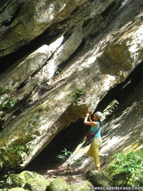 Paquita debajo de unas rocas a orillas del río Shilcayo (Cordillera Escalera, Perú)