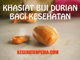 Khasiat Biji Durian