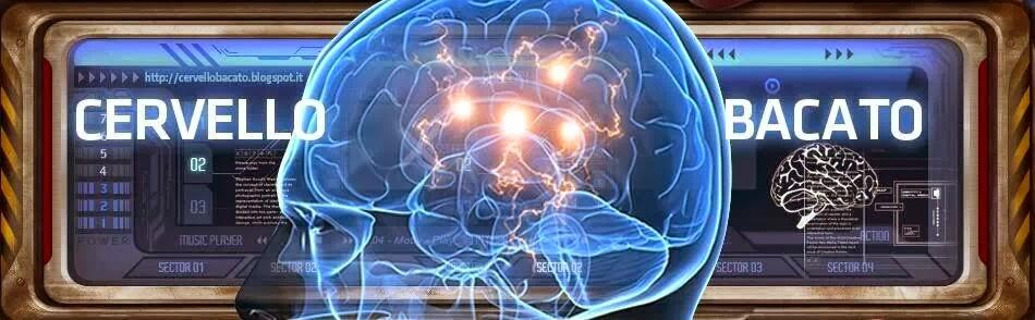 CervelloBacato