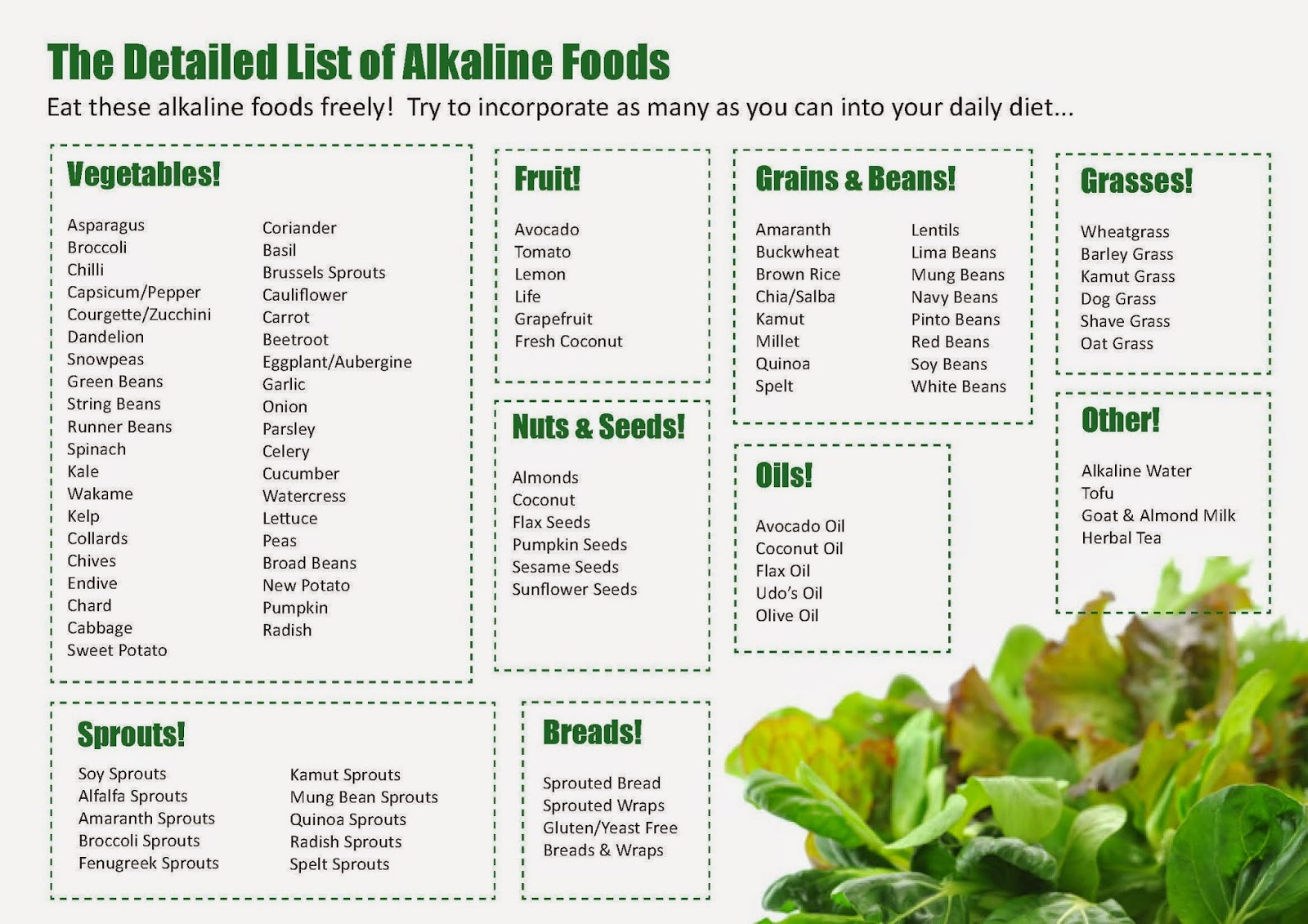 This is a graphic of Sly Printable Alkaline Food Chart