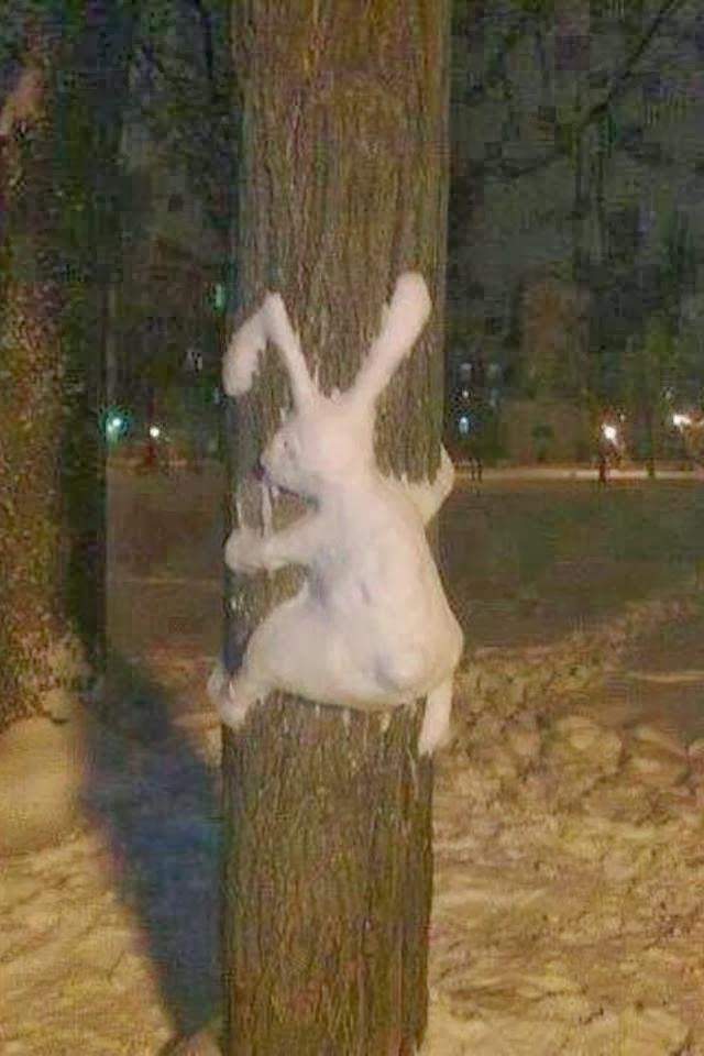 Зайчишка думает его не заметят