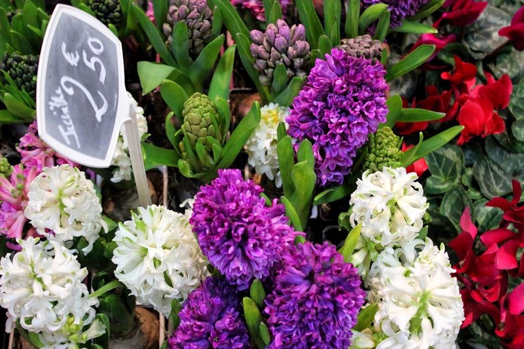 Marche d'Aligre florist