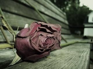gambar cerita cinta sedih