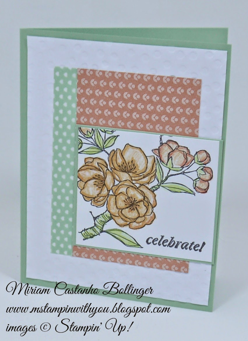 Miriam Castanho Bollinger, mstampinwithyou, stampin up, demonstrator, ppa 232, indescribable gift stamp set, and many more stamp set, sweet sadie washi tape, texture boutique machine, decorative dots tief, su