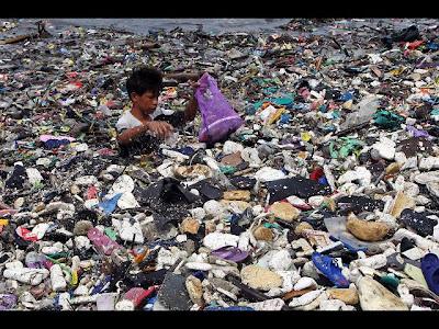 Mas de 500 muertos tras el paso del Tifón Bopha, 08 de Diciembre 2012