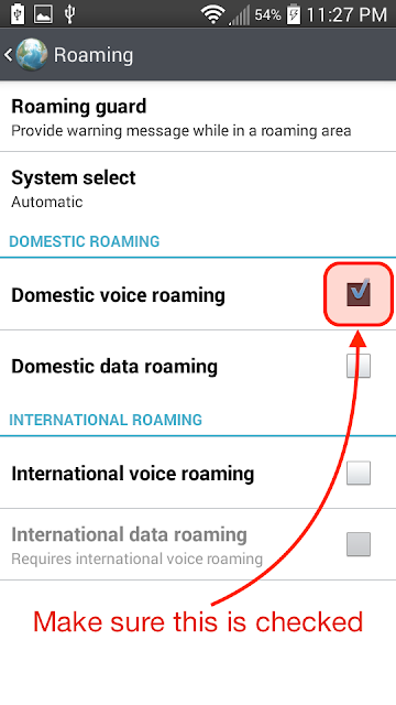 Make sure Domestic voice roaming is checked