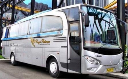 Sewa Bus Pariwisata Murah Royal Platinum