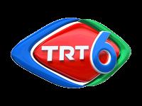 قناة تي ار تي السادسة