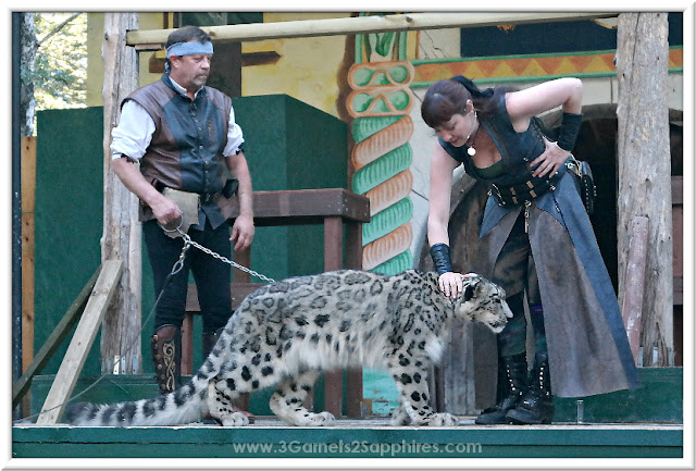 The Great Cats World show at King Richard's Faire 2015 #krfaire