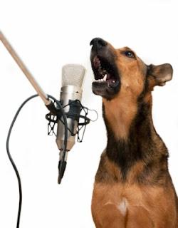 Perro ladrando ante micrófono