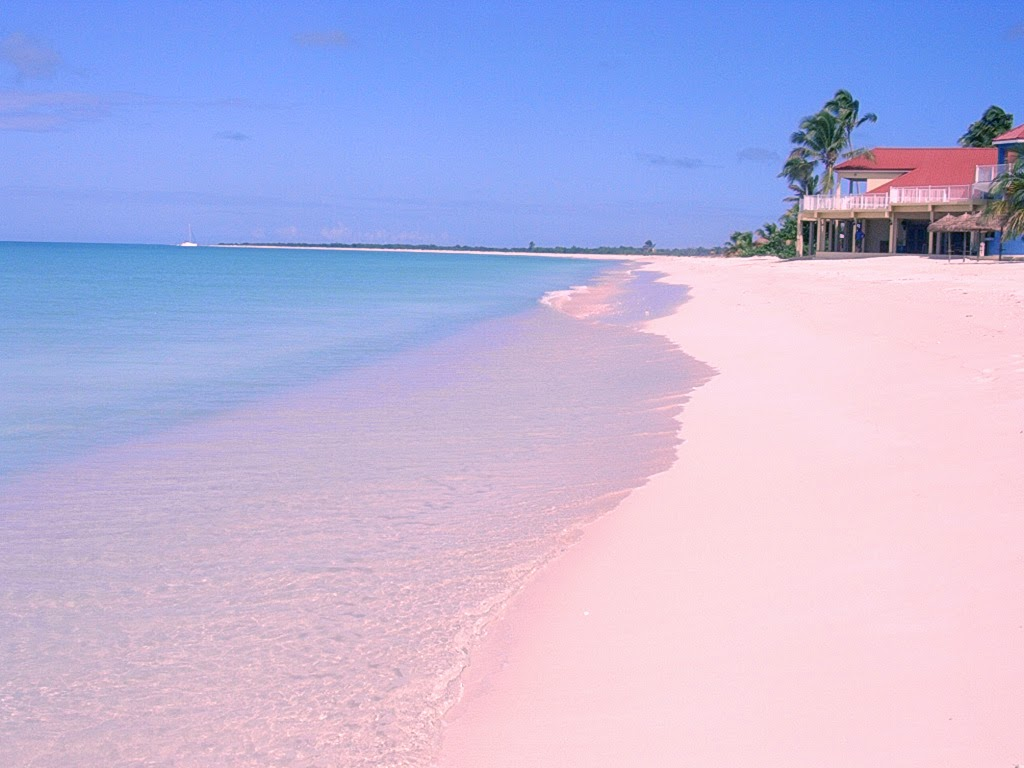 10 colorful beaches around the world top 10s for Pink sand beaches bahamas