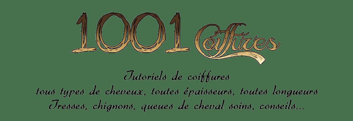 1001 coiffures