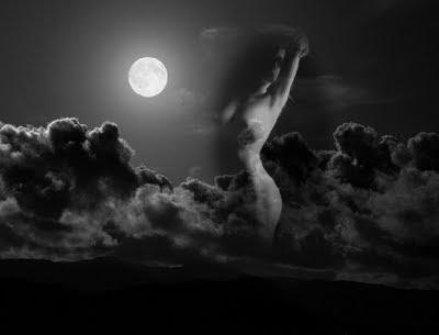 La dama noche (poema propio)