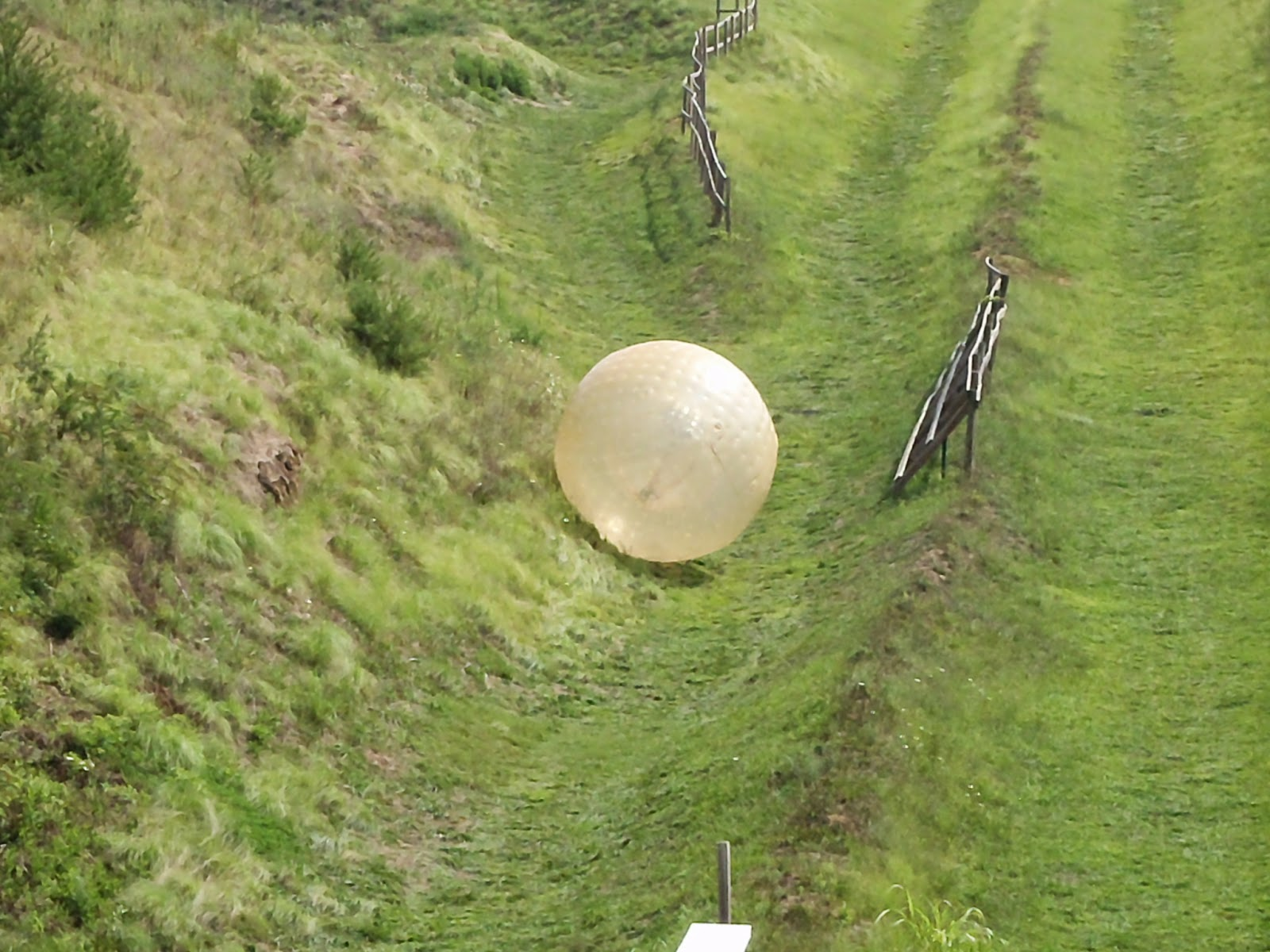 zorbing in tennessee
