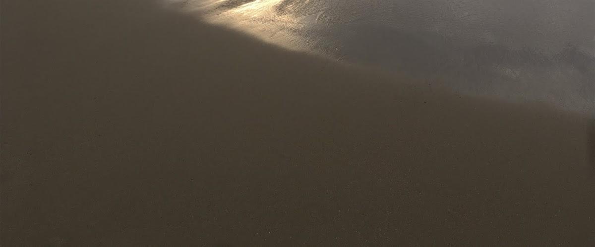 Dunes blog