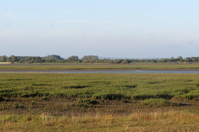Pagham Harbour, West Sussex