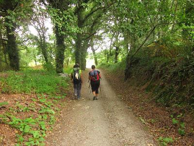 Portuguese Way of Saint James near Caldas do Reis