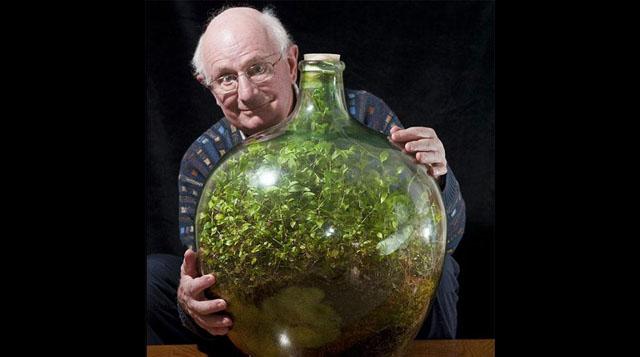 Imagen del día: Este hombre no ha regado este jardín dentro de esta botella sellada desde 1972 y todavía sigue viva