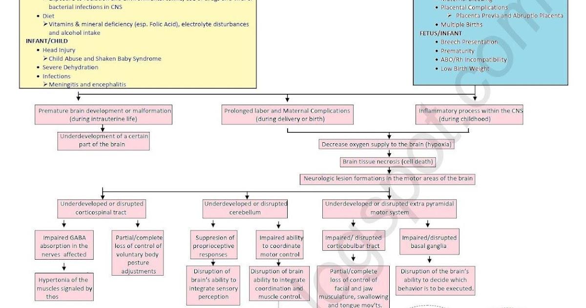 Nursing clinical reflection essay