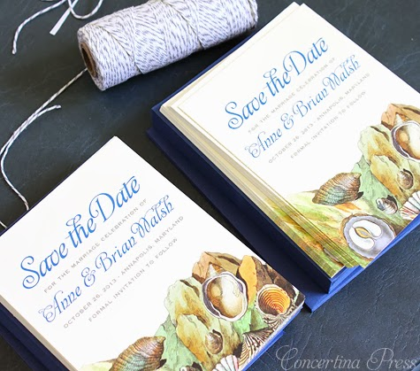 Blue Tide Pool Nautical Save the Dates by Concertina Press