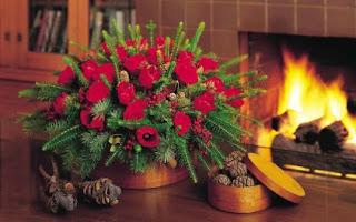 HD Christmas Flower images