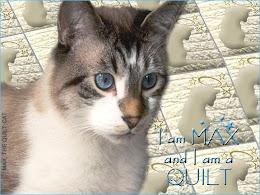 Max the Quilt Cat