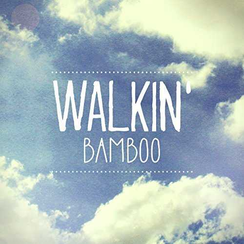 [Single] BAMBOO – WALKIN' (2015.07.17/MP3/RAR)