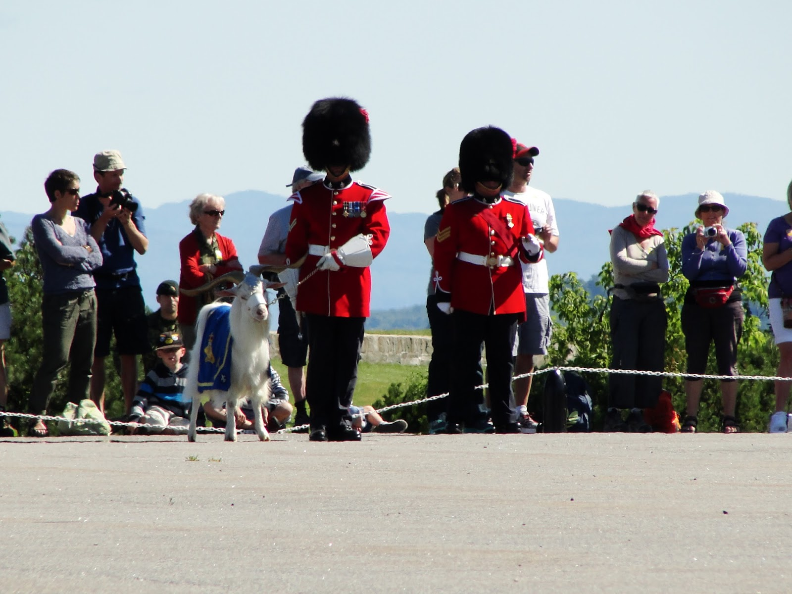Changing of the Guards - and a goat! From Travel Writers' Secrets: Top Quebec City Travel Tips