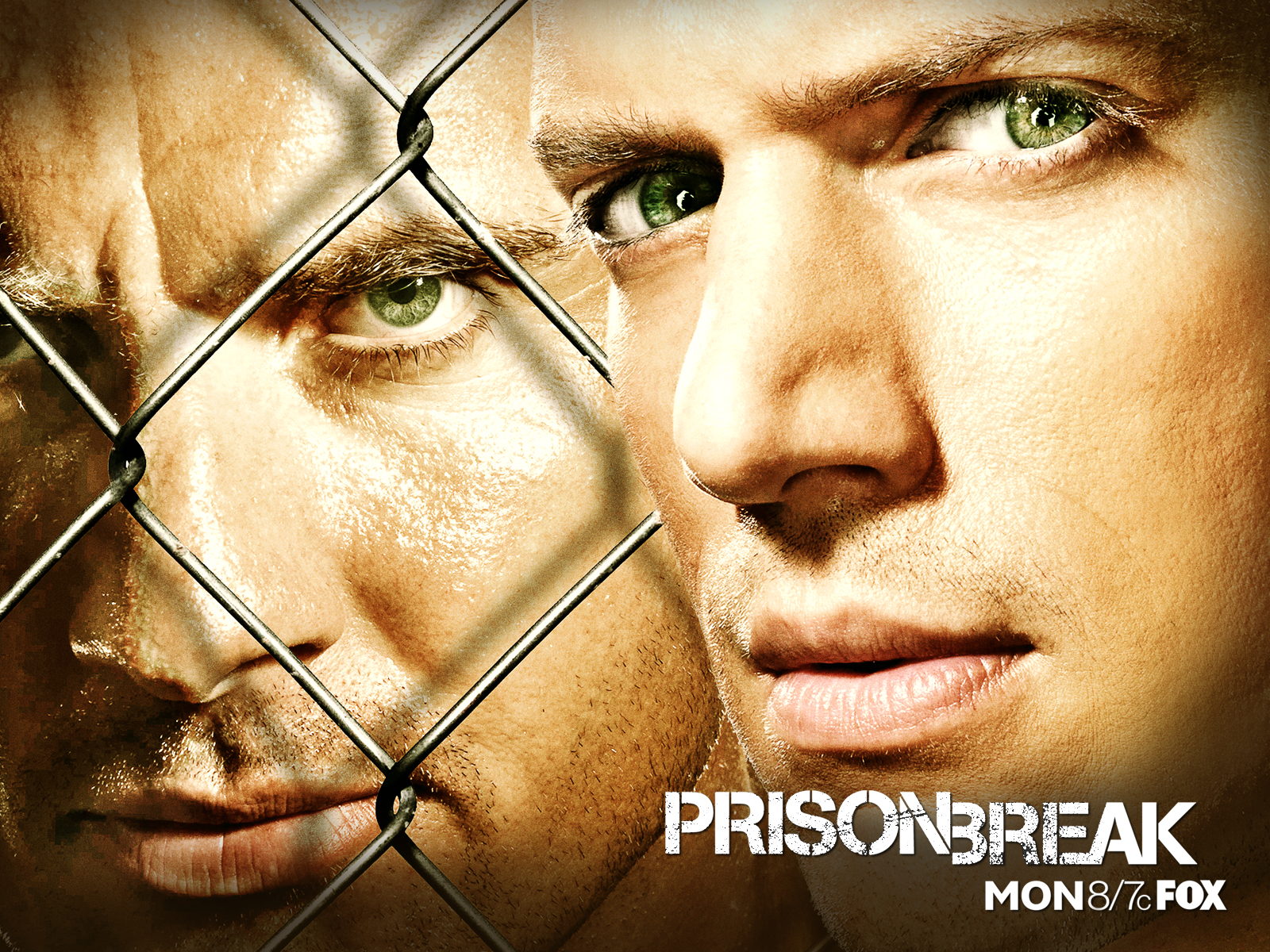 Watch prison break online