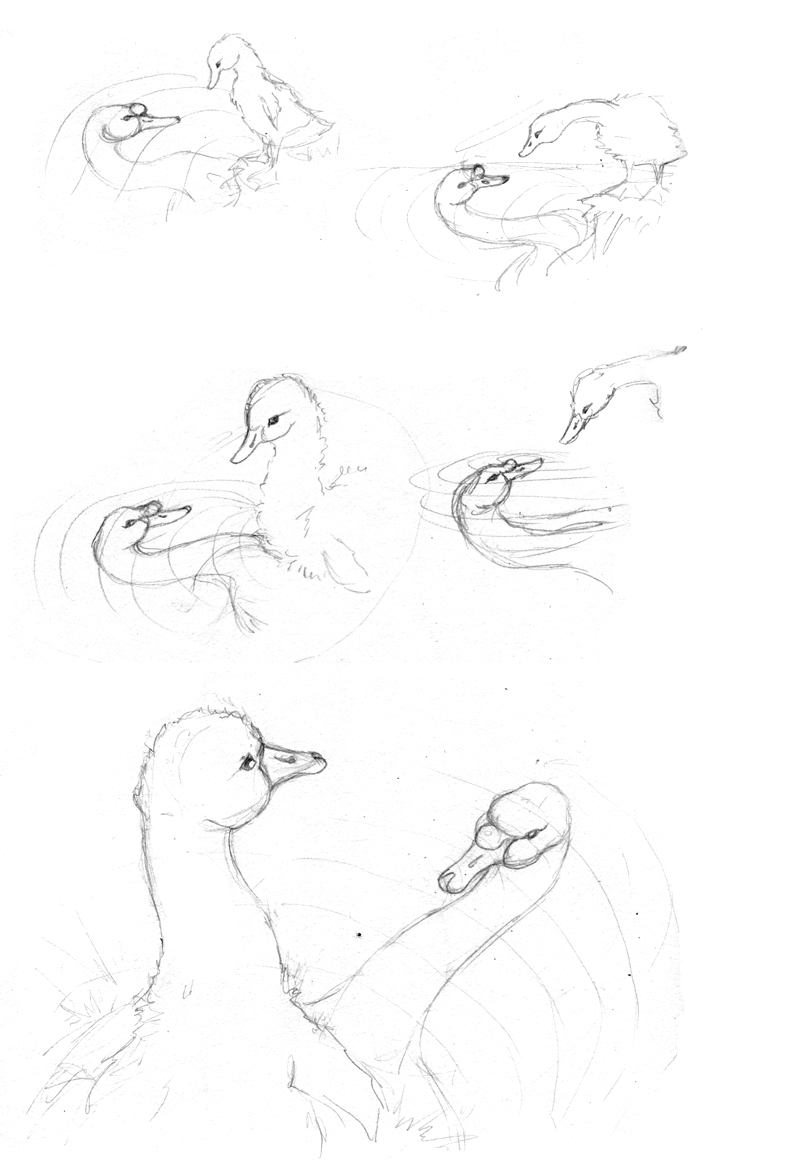 amy holliday illustration concept sketches for the ugly duckling