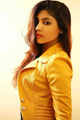 Komal Jha Glamorous Portfolio Stills-thumbnail-18