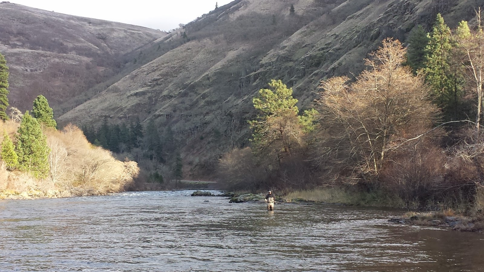 The evening hatch reports klickitat river report 11 26 14 for Klickitat river fishing report