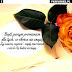 Życzenia urodzinowe dla przyjaciółki graficzne na fb / piękne wiersz na urodziny dla przyjaciółki z obrazkami na facebooka - Bądź jasnym promieniem dla tych, co słońca nie znają. Żyj zawsze czynem - nigdy marzeniem i niech Cię ludzie kochają. / najpiękniejsze kartki urodzinowe z kwiatami zdjęcia