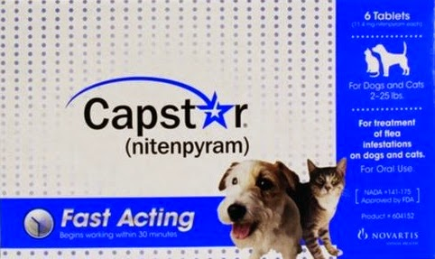 Capstar Flea Medication
