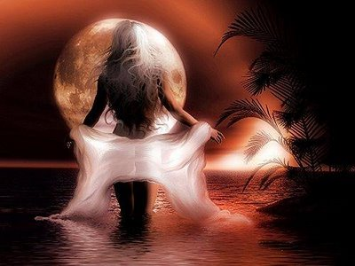 El reflejo nocturno***