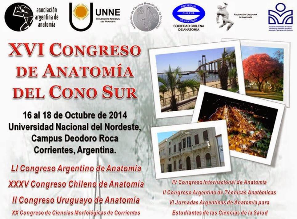 XVI Congreso de Anatomía del Cono Sur - 16 al 18 de Octubre de 2014 - Corrientes Argentina