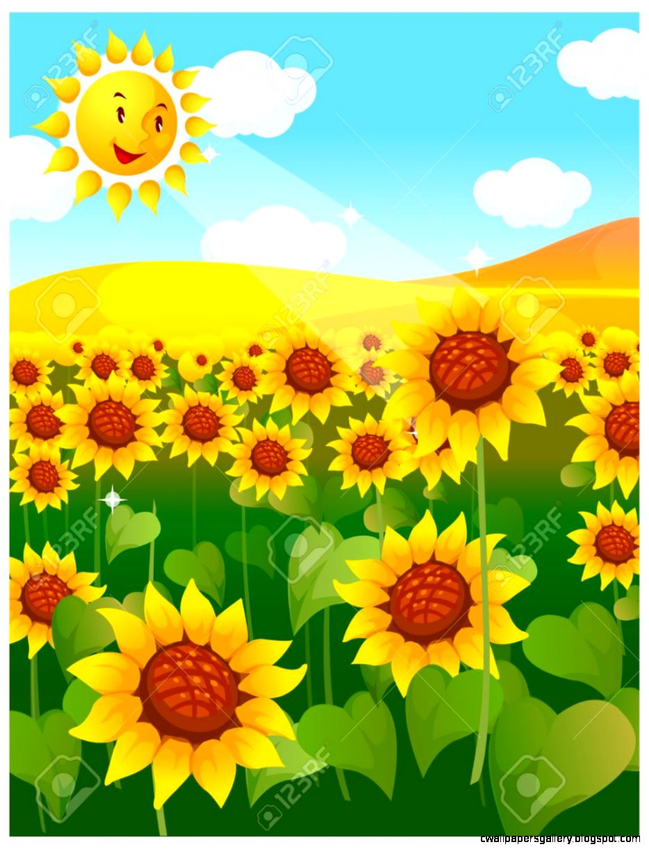 This Illustration Is A Common Natural Landscape Sunflower Field