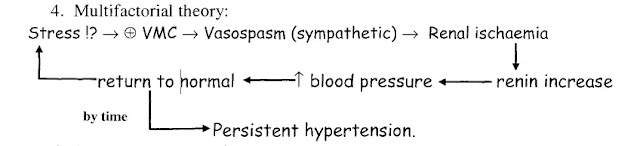 Theories of primary hypertension: