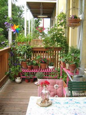 Sacada Jardim