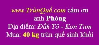 Trùn quế Đắk Tô - Kon