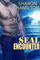 SEAL Encounter