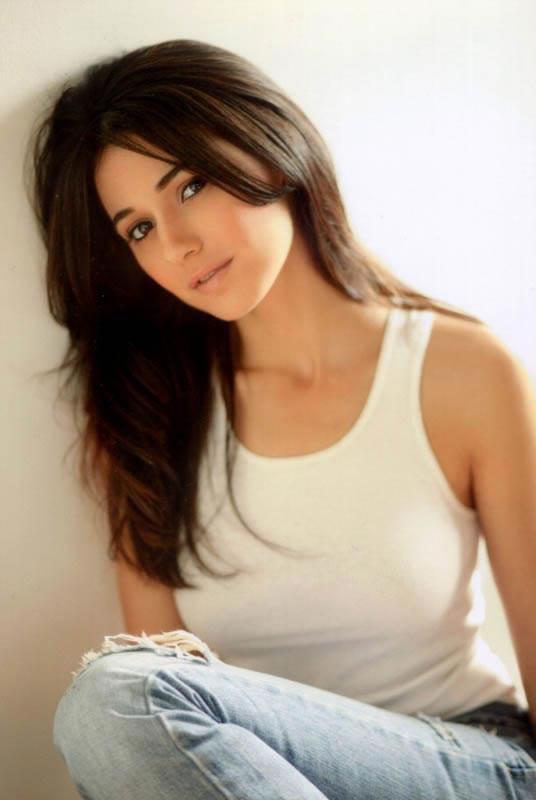 Emmanuelle Chriqui hot