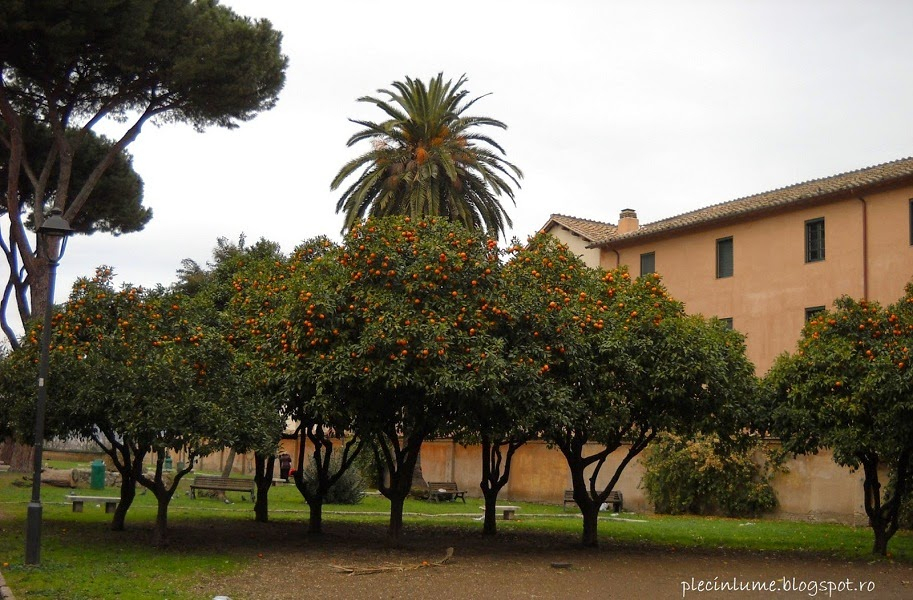 Gradina cu portocali in Roma